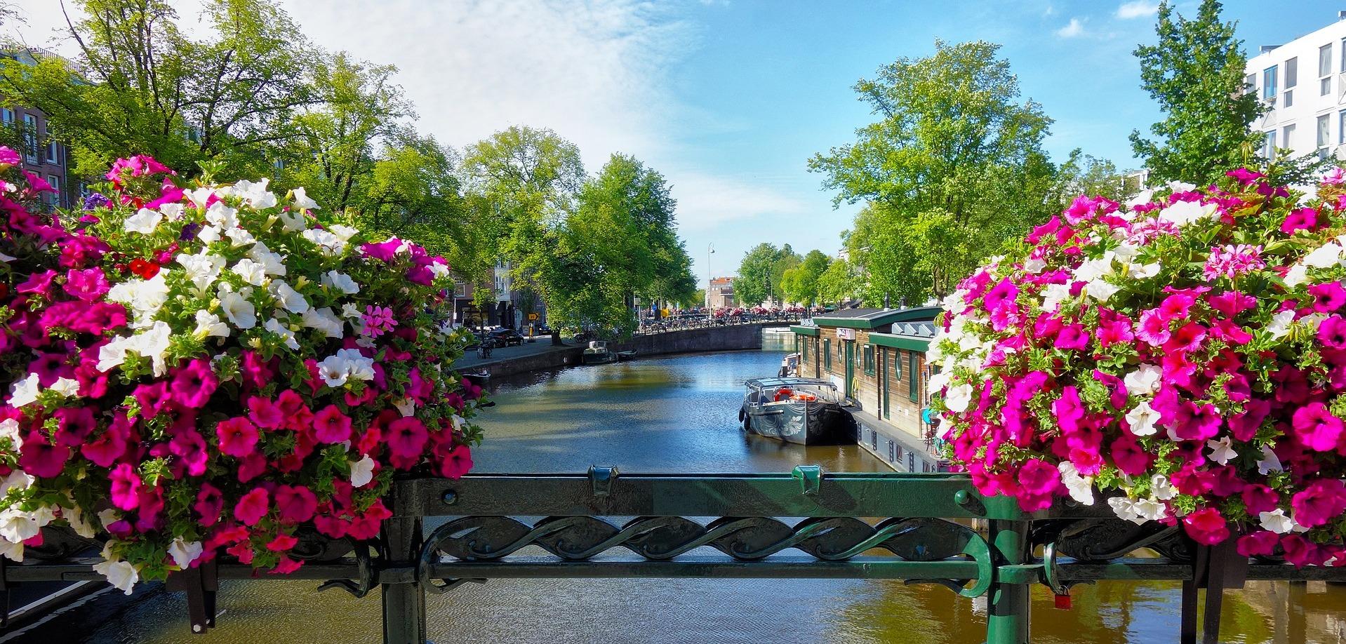 ▷ Amsterdam 7 Handige Tips om een Verhuurd Huis te Verkopen
